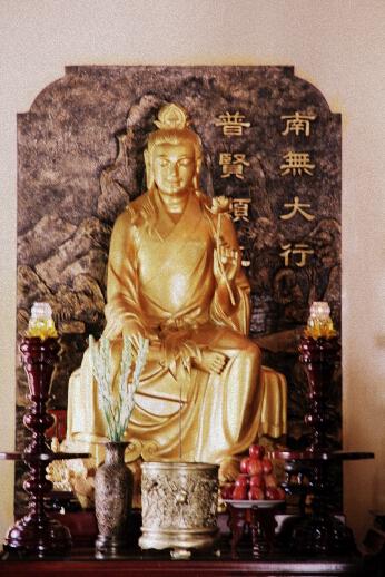 ThuongChieu113